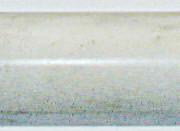 calverdebullnosepoledited2